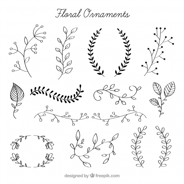 626x626 Pack Of Hand Drawn Floral Ornaments Vector Free Download
