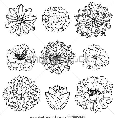450x470 Vector Collection Of Hand Drawn Flowers By Pinkpueblo, Via