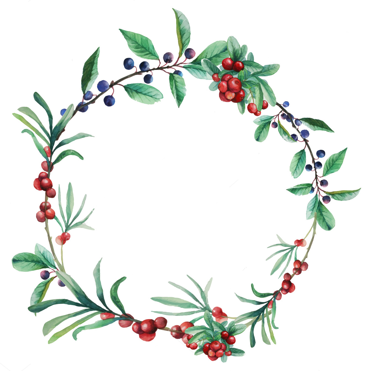 1200x1216 Stock Vector Watercolor Wild Berries Frame Hand Drawn Floral
