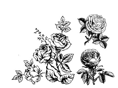 414x308 Hand Draw Flower Vector 01 Free Download