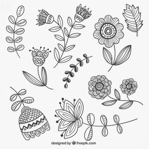626x626 Hand Drawn Flowers Vector Free Download