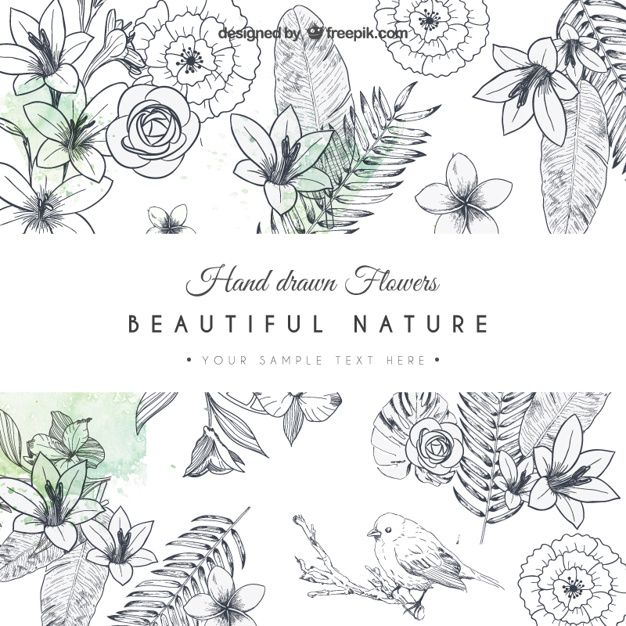 626x626 Hand Drawn Flowers Card Vector Free Download