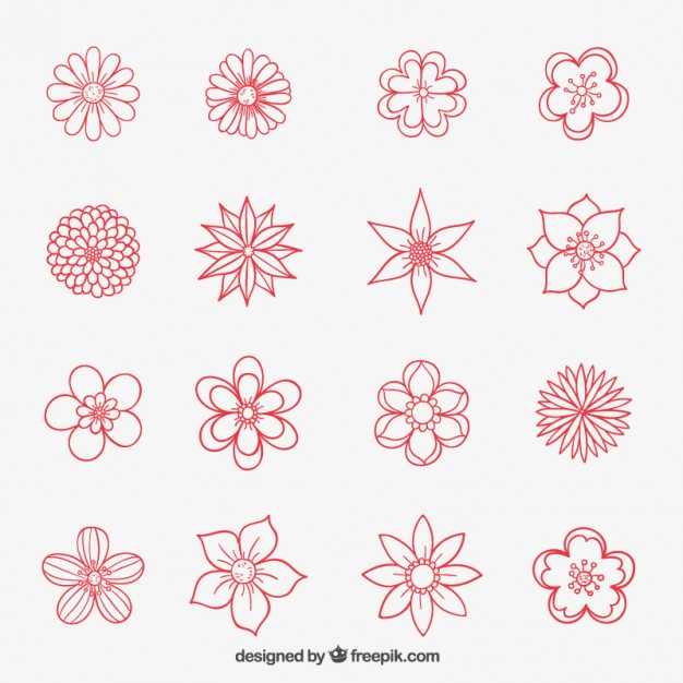 626x626 Hand Drawn Flowers Collection Vector Free Download