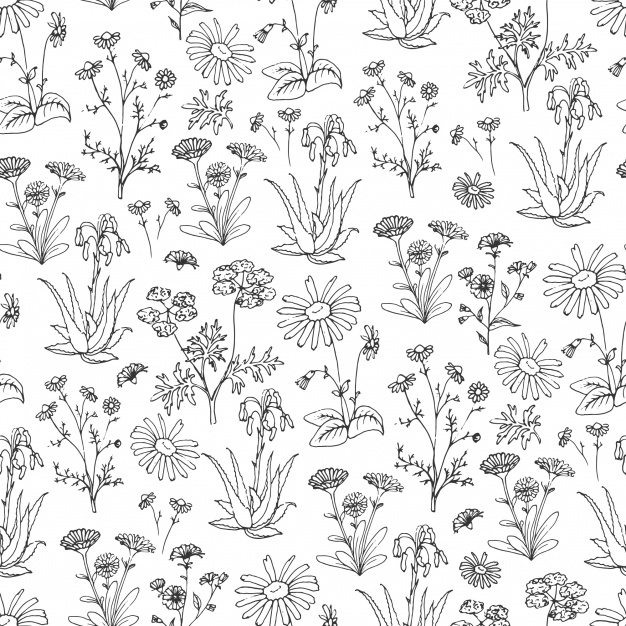 626x626 Hand Drawn Flowers Pattern Background Vector Free Download