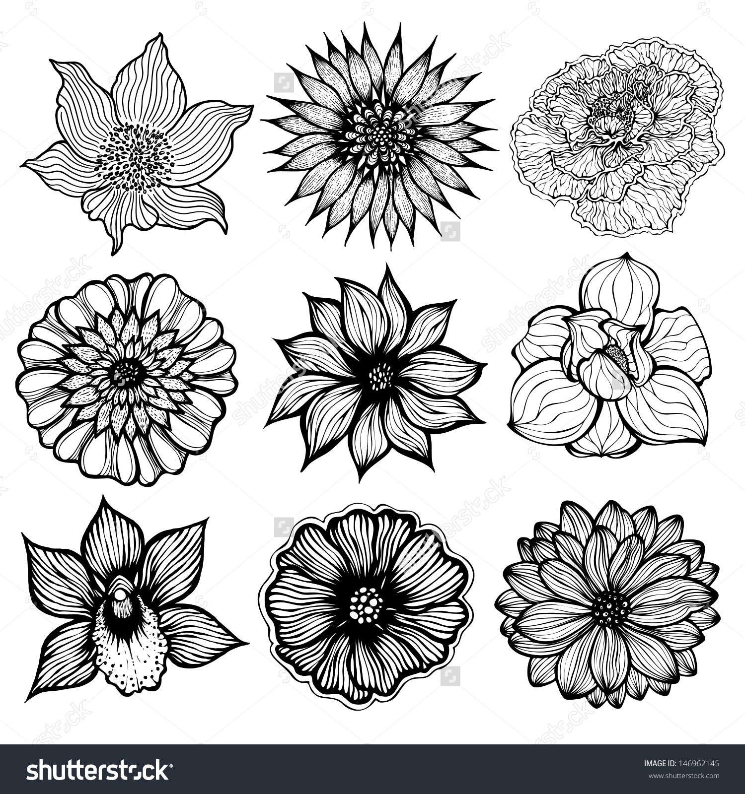1500x1600 Set Of 9 Different Hand Drawn Flowers, Black And White Isolated