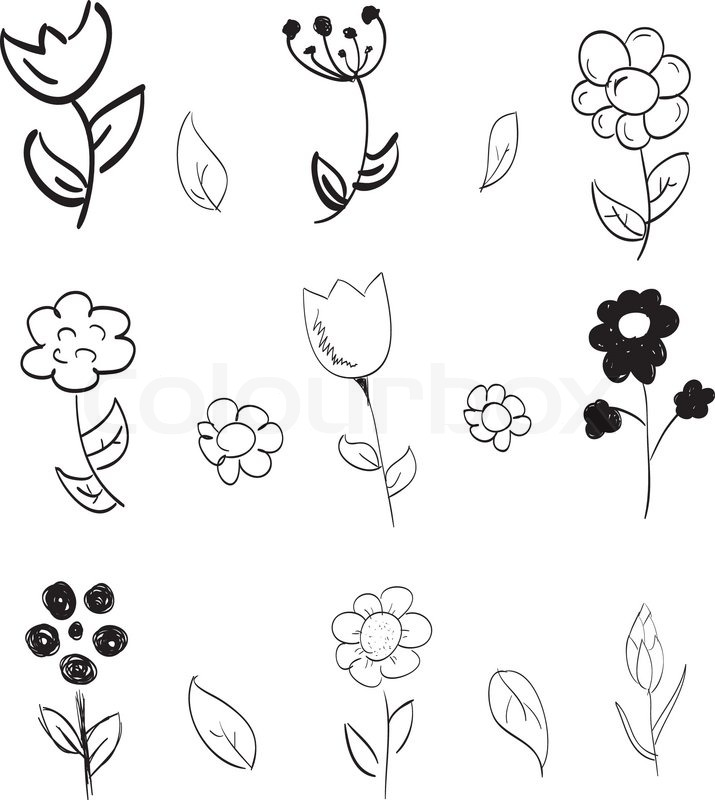 715x800 Set Of Hand Drawn Flowers Stock Vector Colourbox