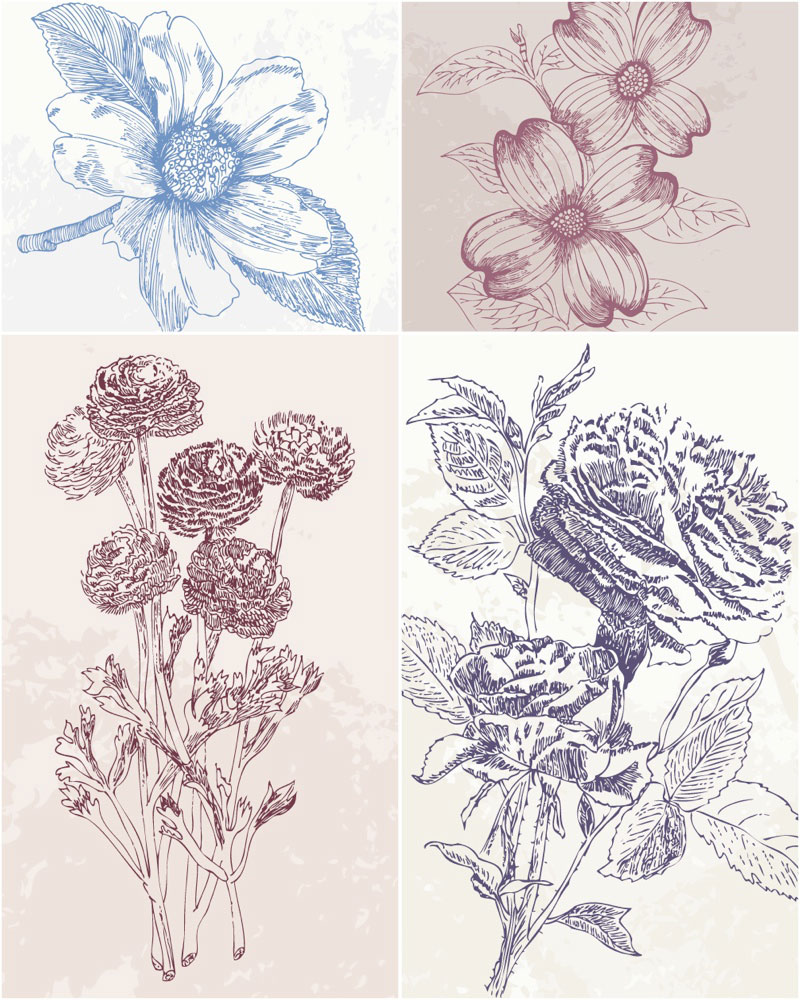 800x1000 Vintage Hand Drawn Flowers Vector Vector Graphics Blog
