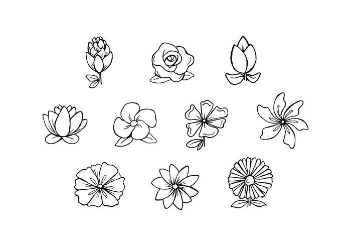 700x490 Free Flowers Hand Drawn Vector