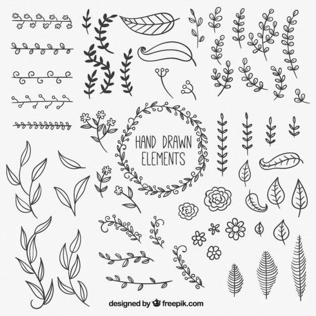 626x626 Hand Drawn Natural Decoration Elements Vector Free Download