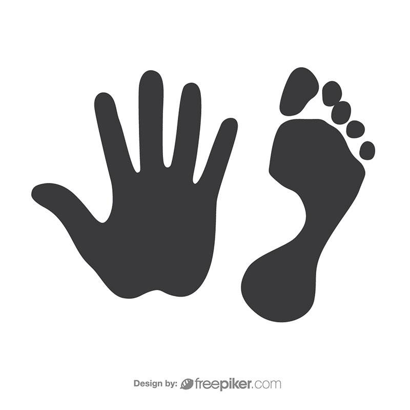 800x800 Freepiker Footprint Amp Handprint Vector