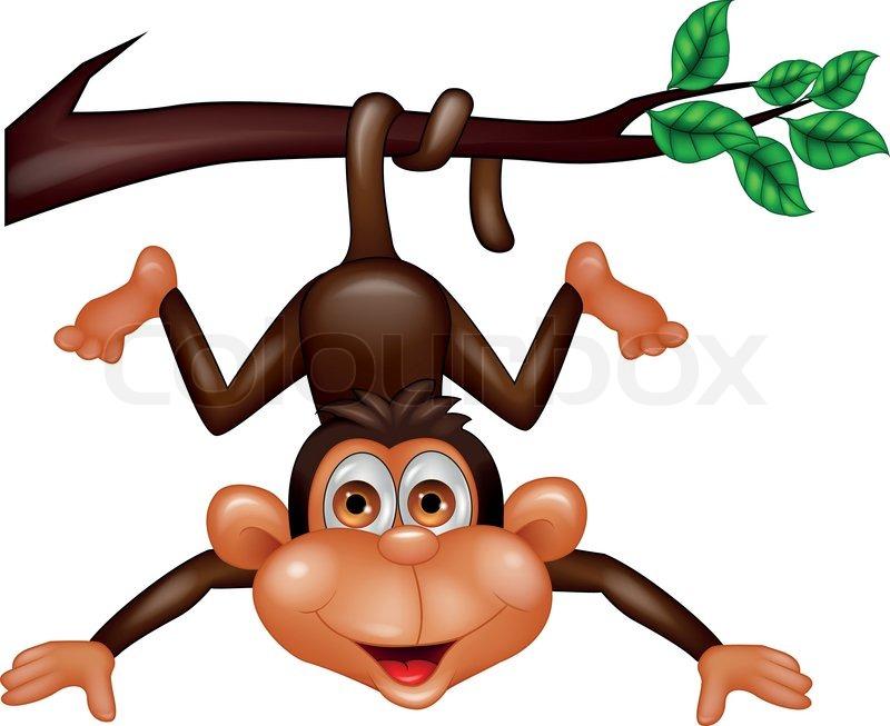 800x653 Vector Illustration Of Funny Monkey Cartoon Hanging On Tree Branch