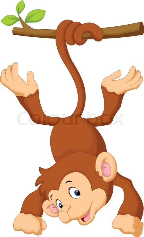 487x800 Vector Illustration Of Cute Monkey Cartoon Hanging Stock Vector