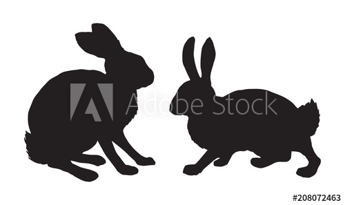 500x297 Hare. Vector Drawing