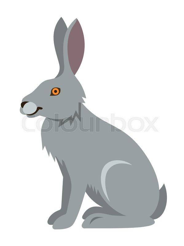 599x799 Cute Smiling Wild Hare Vector Cartoon Illustration. Zoo Animal