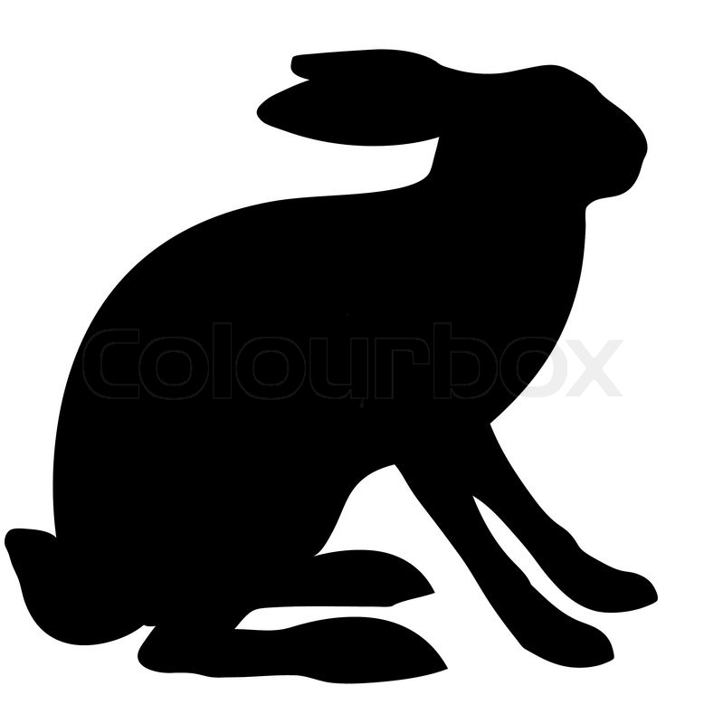 799x800 Illustration Hare Isolated On White Background Stock Vector