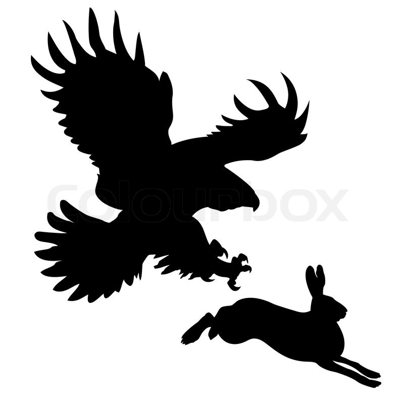 800x800 Silhouette Of The Ravenous Bird Attacking Hare Stock Vector