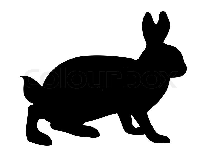 800x608 Vector Illustration Hare On White Background Stock Vector