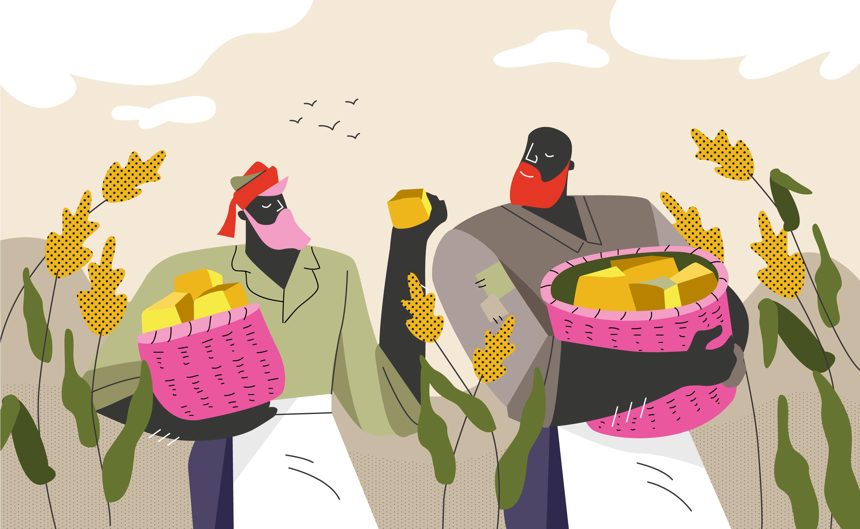 2800x1725 Sorghum Farmer Harvest Vector Flat Illustration