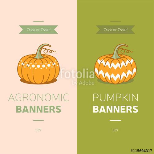 500x500 Pumpkin Logo, Pumpkin Halloween Party Card, Harvest Vector Icons