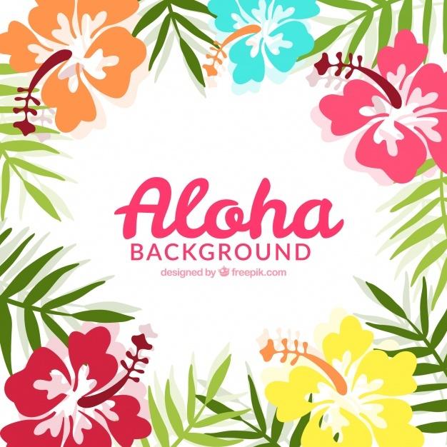 626x626 Hawaiian Flower Vectors, Photos And Psd Files Free Download