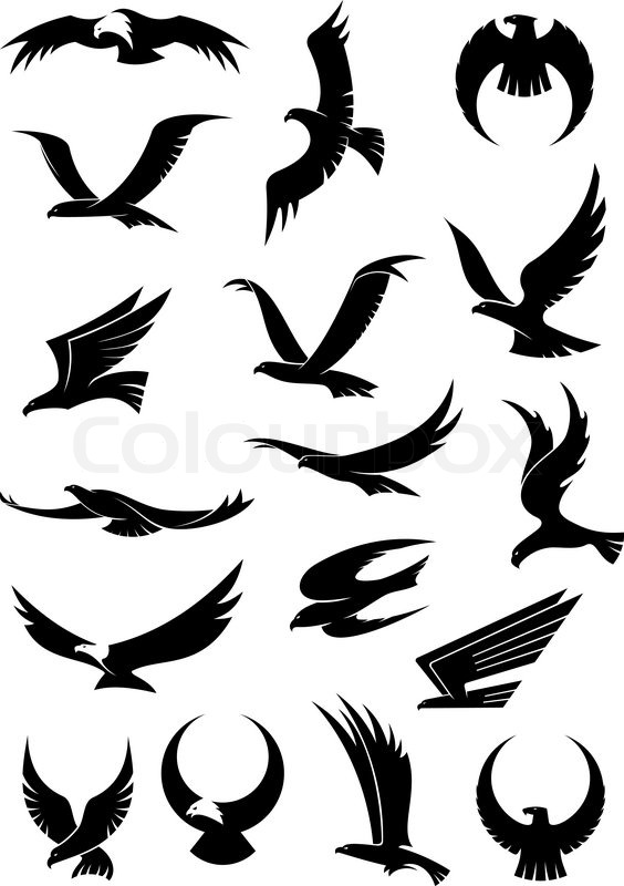 564x800 Flying Eagle, Falcon And Hawk Vector Logo Icons Showing Different