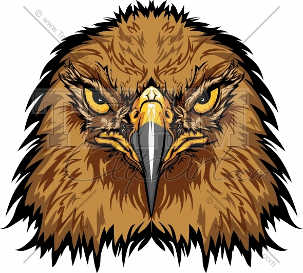 590x531 Hawk Clipart Image. Easy To Edit Vector Format.