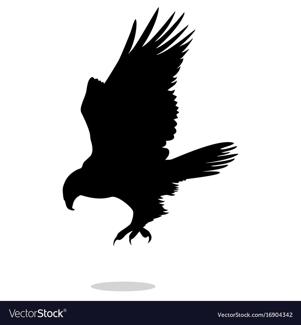 1000x1080 Hawk Eagle Falcon Bird Black Silhouette Animal Vector 16904342 19