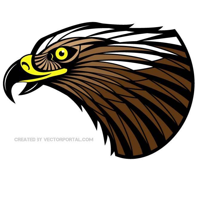 660x660 Hawk Vector Color Image By Vectorportal