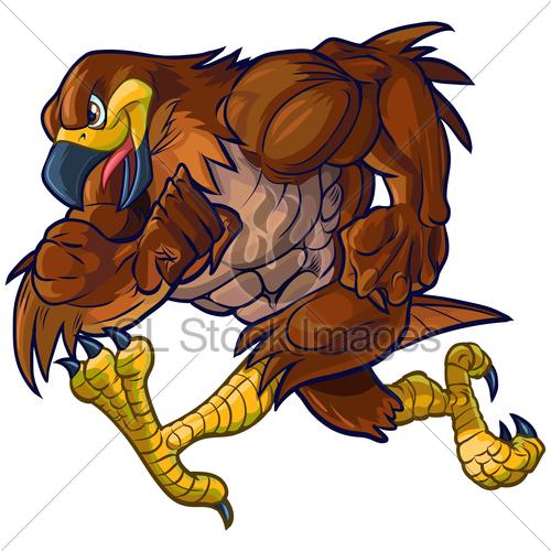500x500 Vector Cartoon Hawk Mascot Running Sideview Gl Stock Images