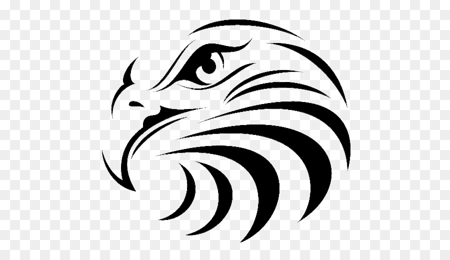 900x520 Vector Graphics Clip Art Hawk Bald Eagle Bird