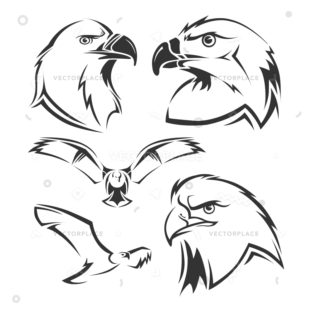1000x1000 Eagle Hawk Mascots Set Tattoo Head Vector Illustration 30612