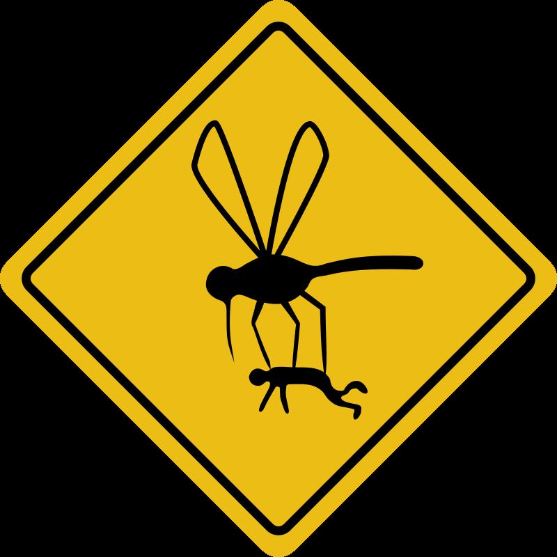 800x800 Mosquito Hazard Free Vector 4vector