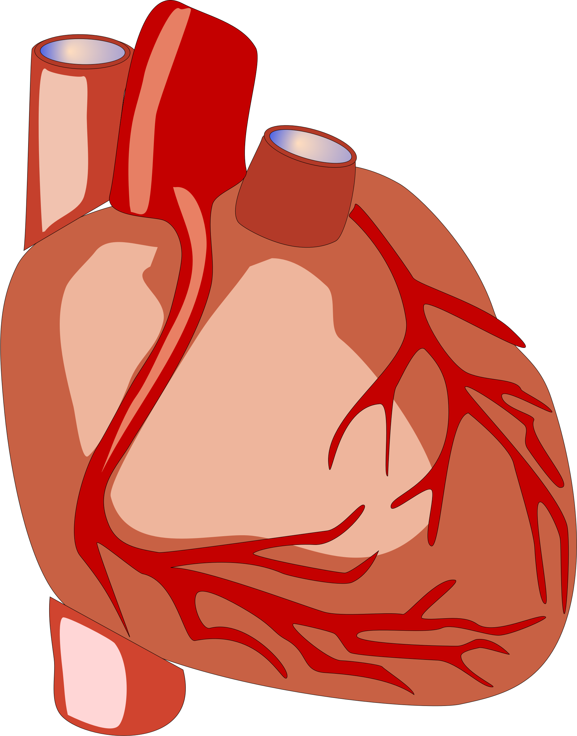 1864x2376 Human Heart Vector File Image