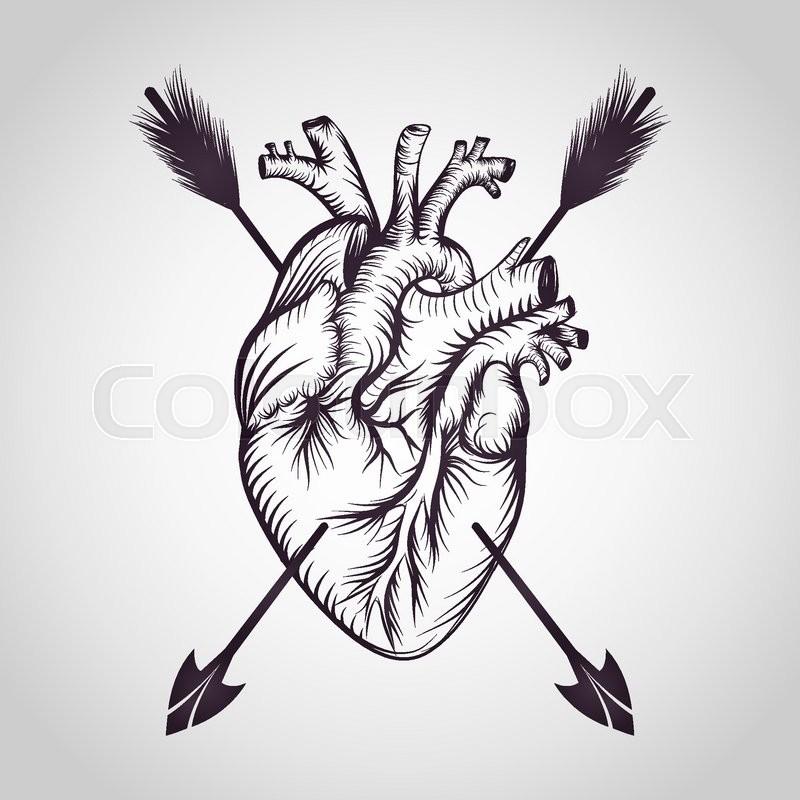 800x800 Heart Tattoo Logo Vector Stock Vector Colourbox