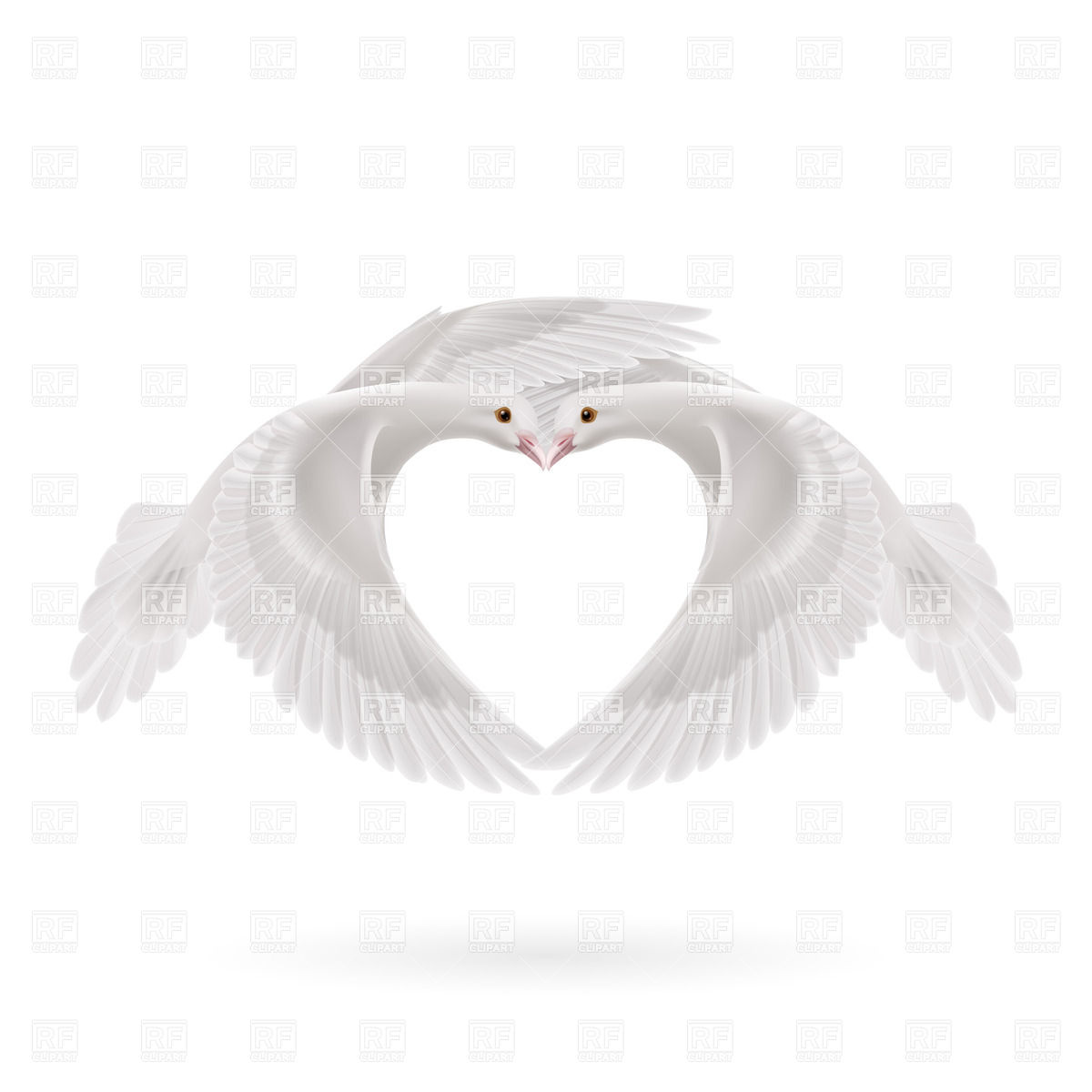 1200x1200 White Doves Makes The Shape Of The Heart Of Wings Vector Image