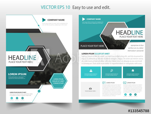 500x376 Blue Hexagon Vector Business Proposal Leaflet Brochure Flyer