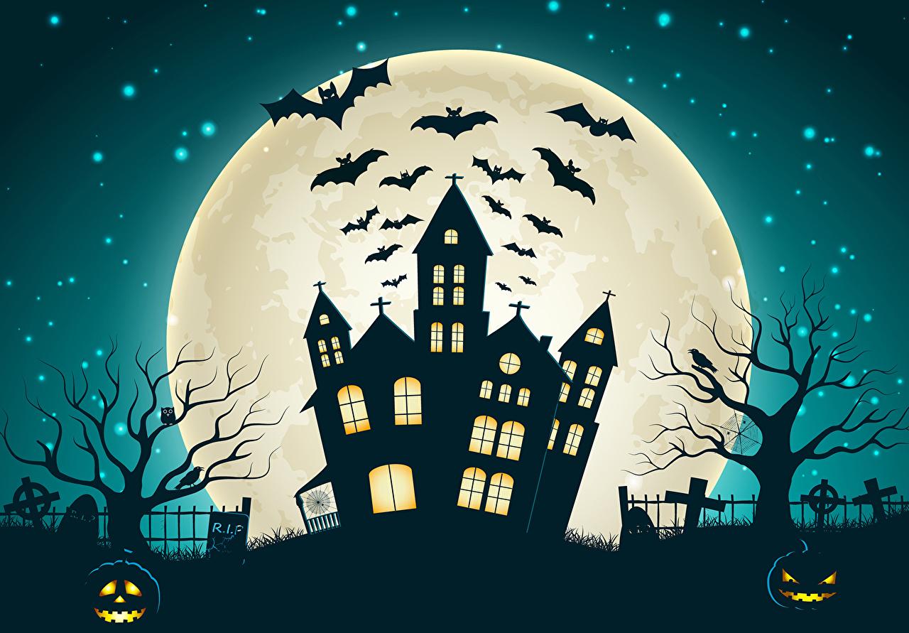 1280x891 Photo Bats Halloween Moon Night Houses Holidays Vector Graphics