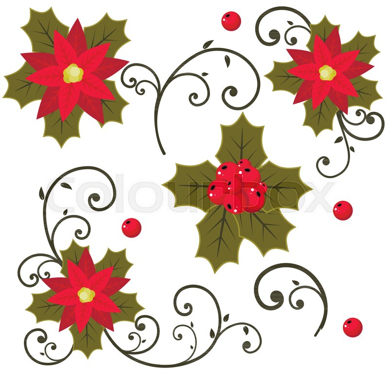 800x800 Christmas Holly Berry Vector Set Isolated From The Background