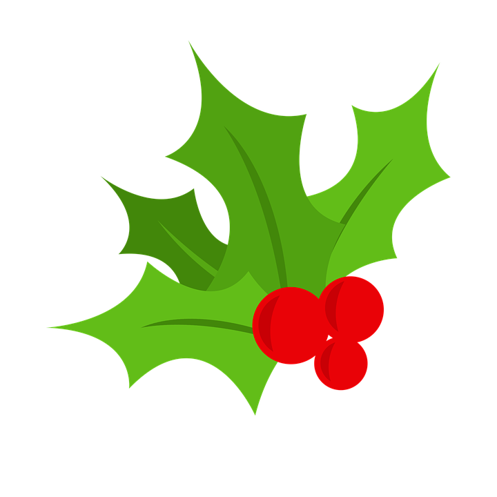 720x720 Collection Of Free Holly Vector Background. Download On Ubisafe