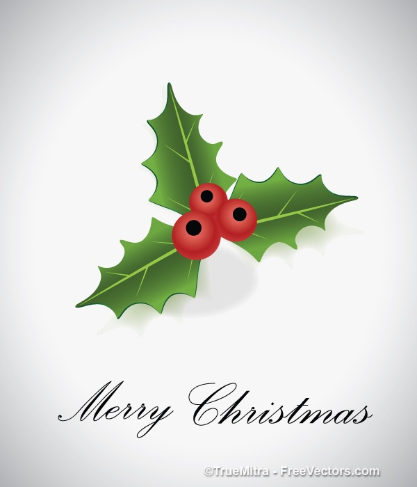 600x700 Holly Berry Vectors, Photos And Psd Files Free Download