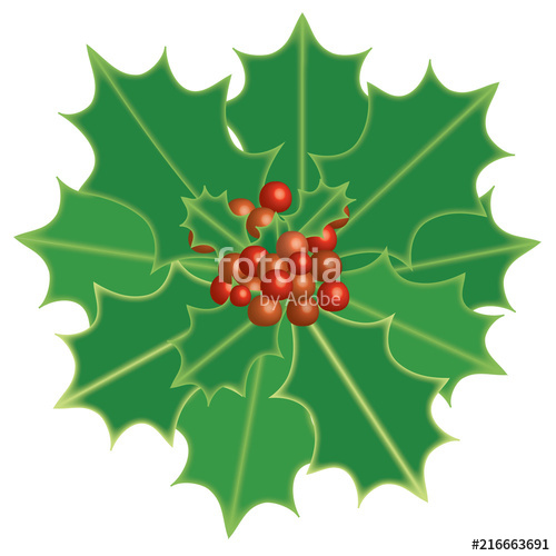 500x500 Holly Berry. Christmas Theme Symbolic Plants Holly, Vector Format