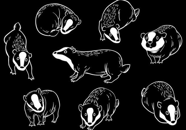 632x443 Free Honey Badger Icons Vector Free Vector Download 405997 Cannypic