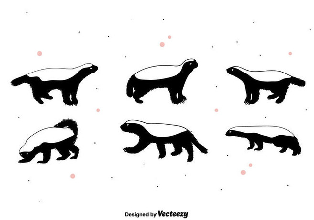 632x443 Honey Badger Vector Free Vector Download 395217 Cannypic