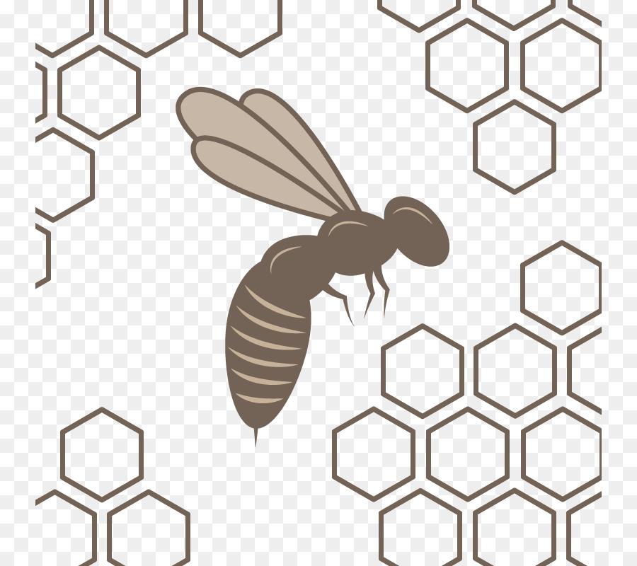 900x800 Honey Bee Honeycomb Beehive Pattern