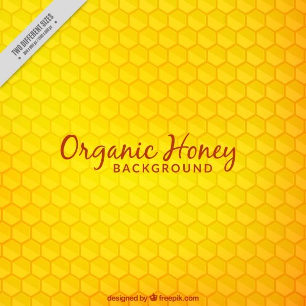 626x626 Honeycomb Vectors, Photos And Psd Files Free Download
