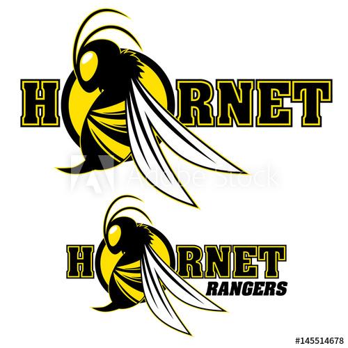 500x500 Hornet Vector Logo