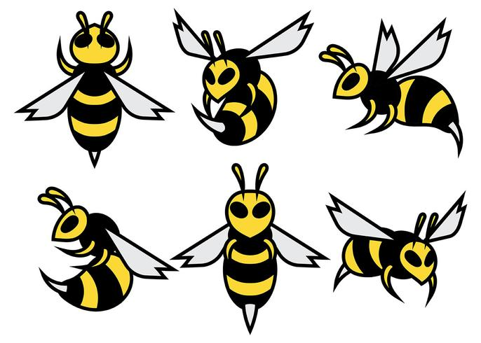 686x490 Hornets Vector Icons