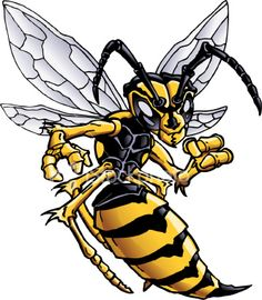236x270 Angry Hornet Clipart Amp Angry Hornet Clip Art Images