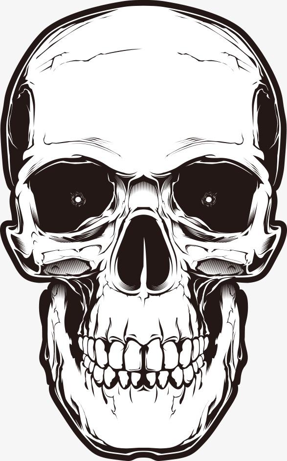 587x941 Vector Horror Skull, Horror Skull, Skull, Cartoon Skull Png And