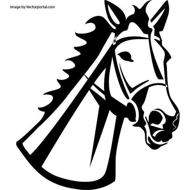 660x660 Horse Head Illustration 2 Free Vector Free Vectors